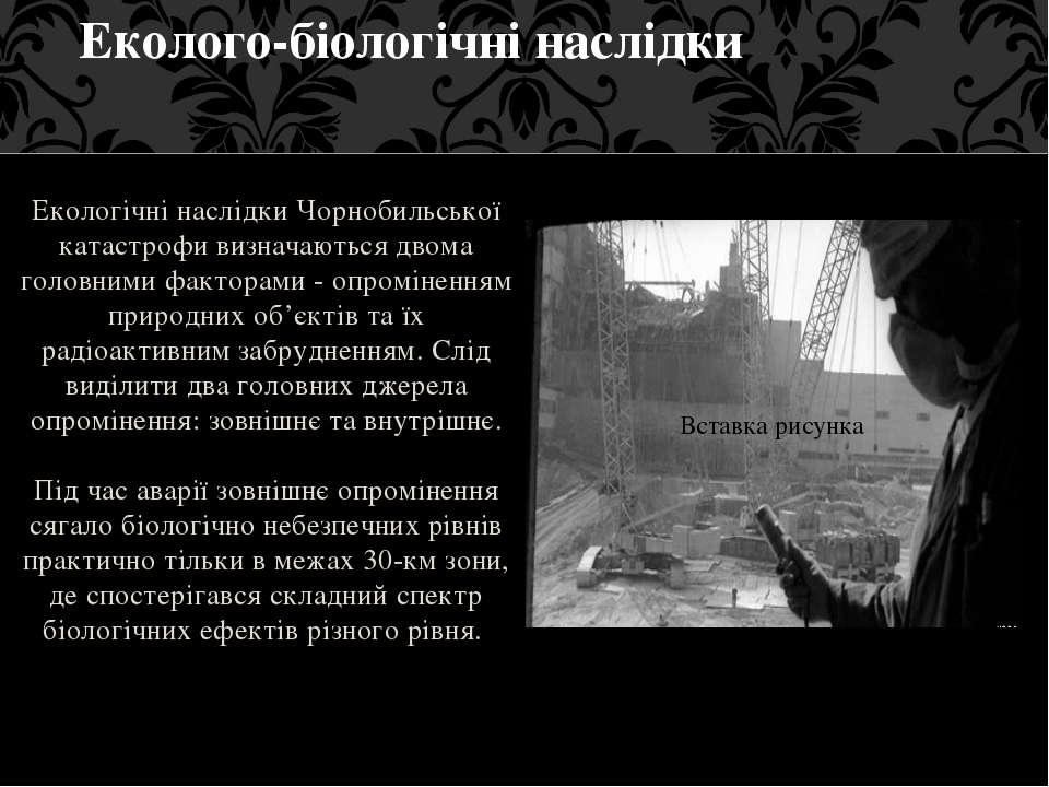 Екологічні наслідки Чорнобильської катастрофи визначаються двома головними фа...