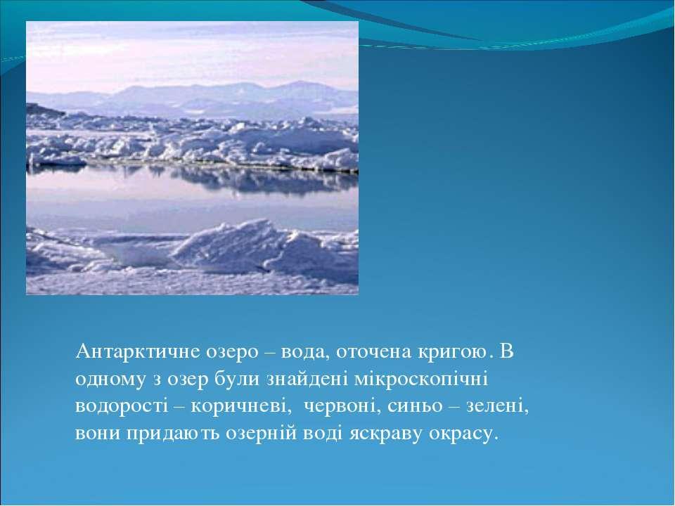 Антарктичне озеро – вода, оточена кригою. В одному з озер були знайдені мікро...