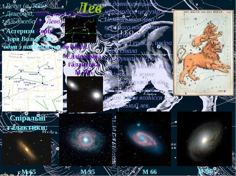 Лев Регул (α Лева) Денебола, хвіст лева (β Лева) Альджеба (γ1 Лева) Астеризм ...