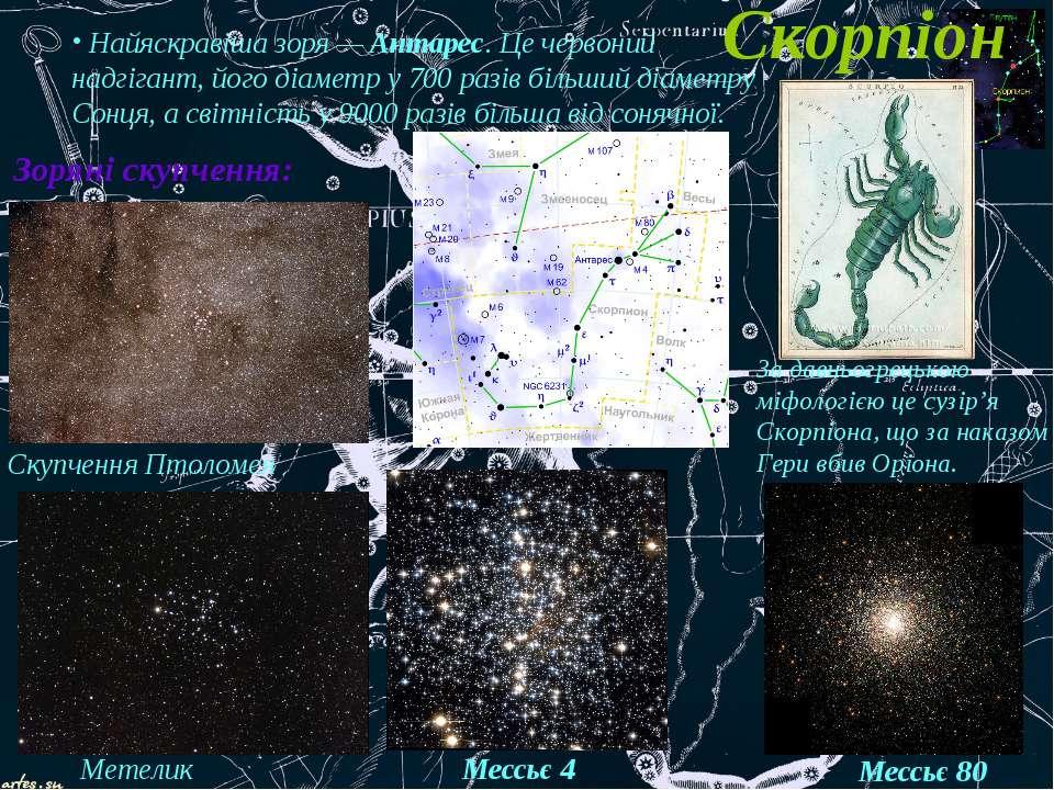 Скорпіон Найяскравіша зоря — Антарес. Це червоний надгігант, його діаметр у 7...