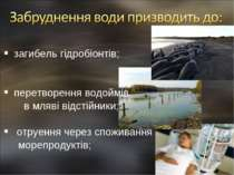 загибель гідробіонтів; перетворення водоймів в мляві відстійники; отруення че...