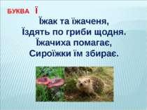 БУКВА Ї Їжак та їжаченя, Їздять по гриби щодня. Їжачиха помагає, Сироїжки їм ...