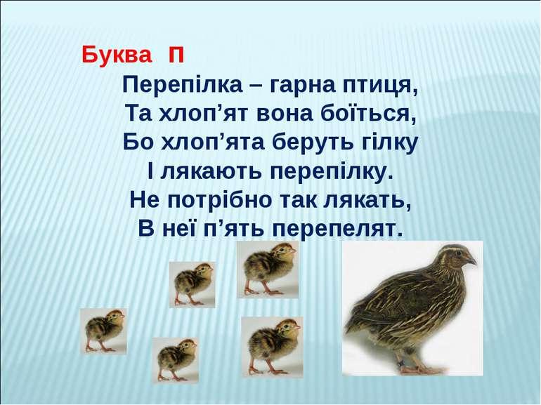 Буква п Перепілка – гарна птиця, Та хлоп'ят вона боїться, Бо хлоп'ята беруть ...