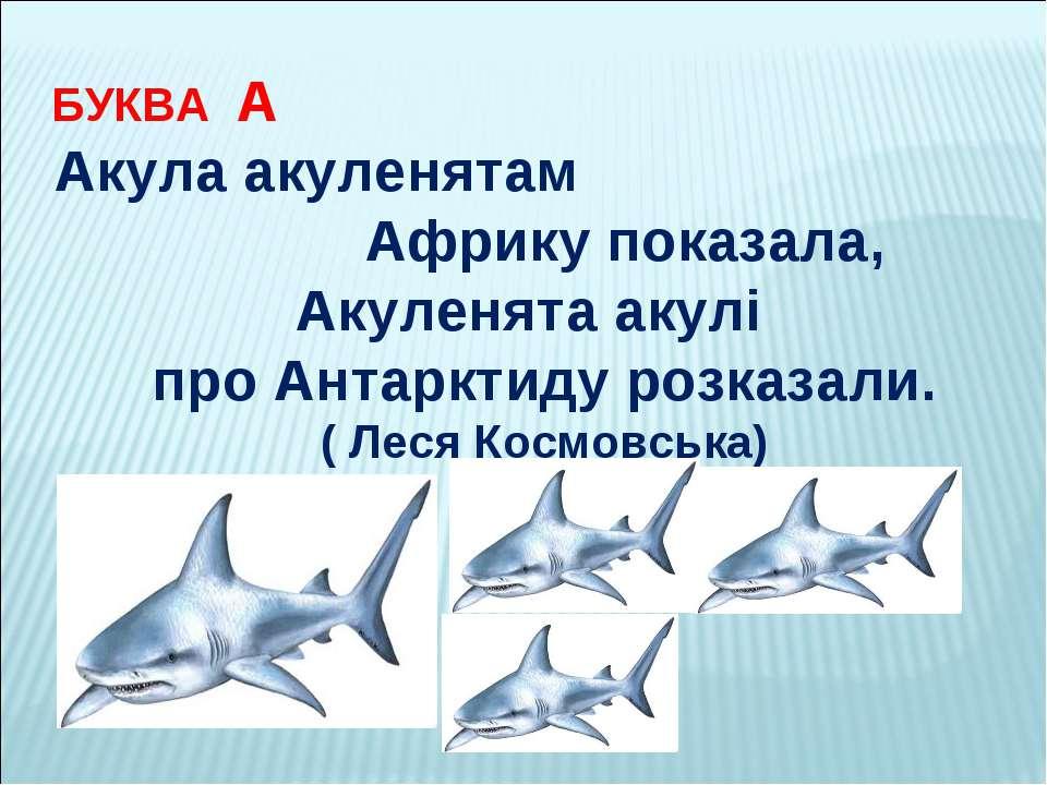 БУКВА А Акула акуленятам Африку показала, Акуленята акулі про Антарктиду розк...