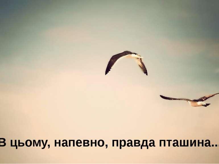 В цьому, напевно, правда пташина...