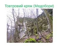 Товтровий кряж (Медобори)