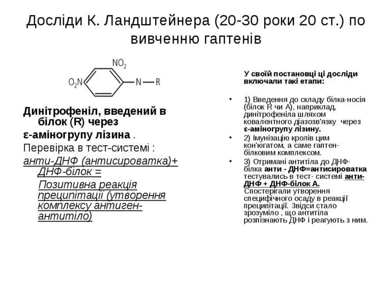 Досліди К. Ландштейнера (20-30 роки 20 ст.) по вивченню гаптенів Динітрофеніл...