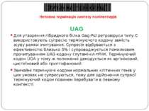 UAG Для утворення гібридного білка Gag-Pol ретровіруси типу С використовують ...