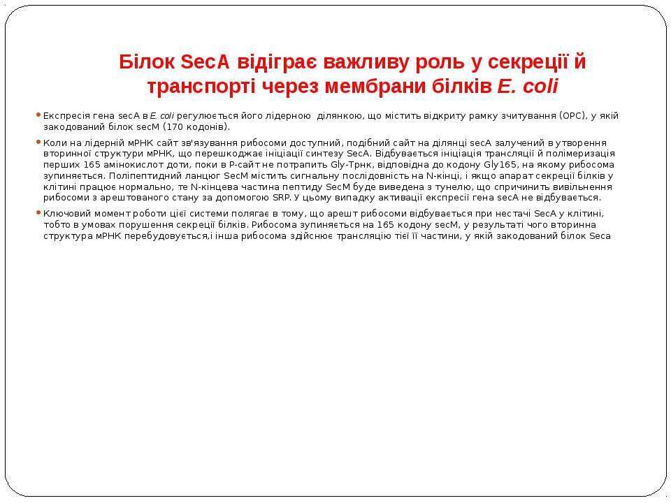 Білок SecА відіграє важливу роль у секреції й транспорті через мембрани білкі...