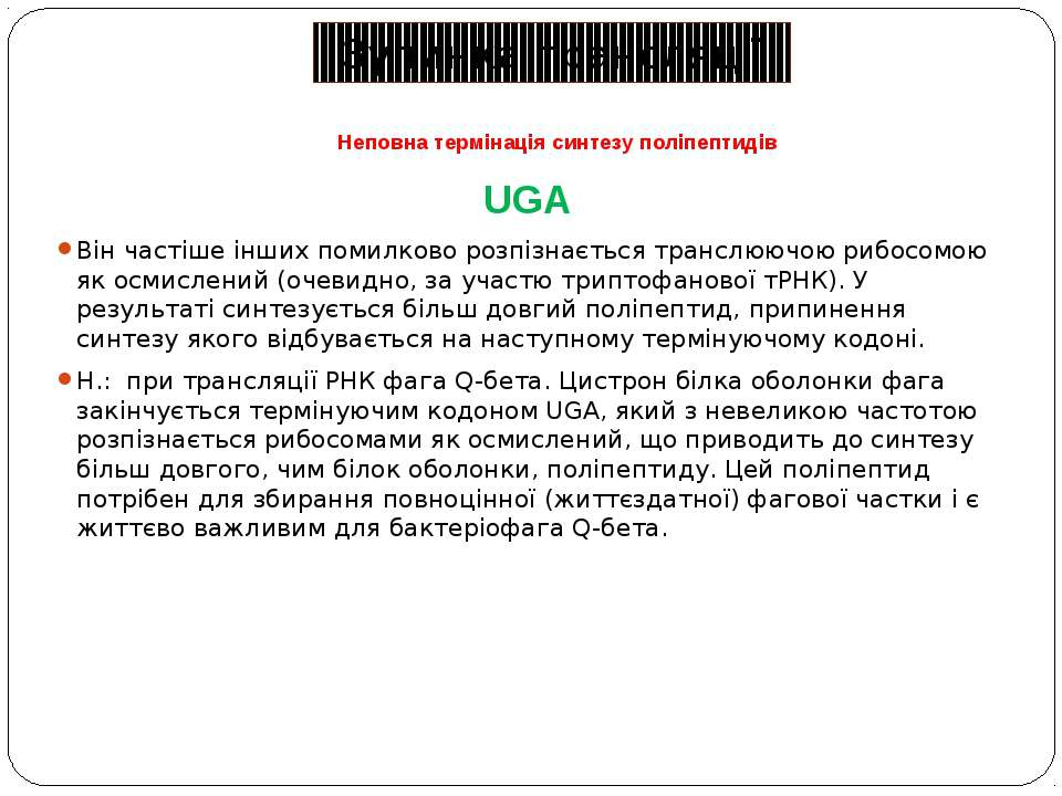 Неповна термінація синтезу поліпептидів UGA Він частіше інших помилково розпі...