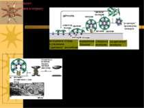 Схема, що показує Функціонування клатрину й динаміну