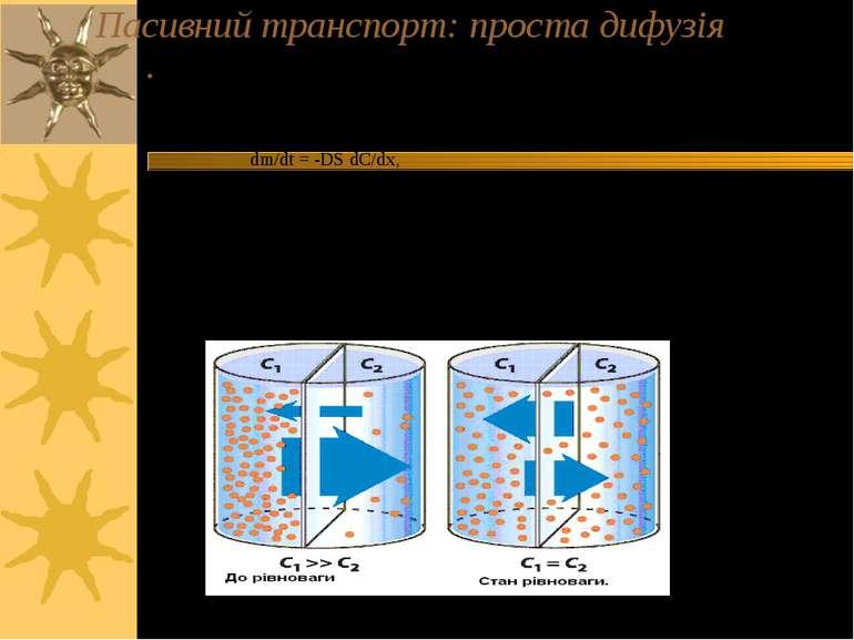 Пасивний транспорт: проста дифузія Проста дифузія – напр., транспорт СО2, Н2О...