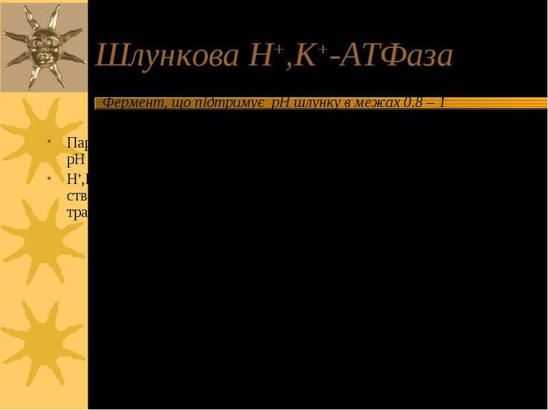 Шлункова H+,K+-ATФаза Фермент, що підтримує pH шлунку в межах 0.8 – 1 Парієта...