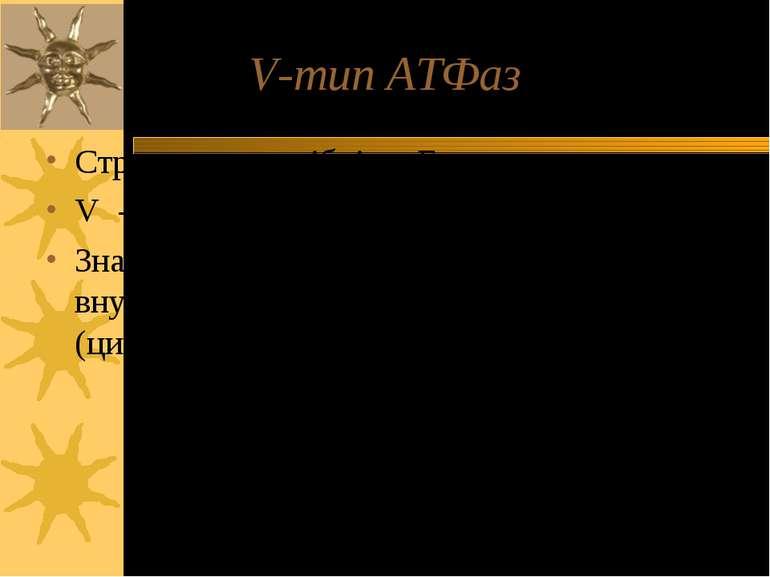 """V-тип ATФаз Структурно подібні до F-типу V - від """"вакуолярна"""" Значення pH в ч..."""