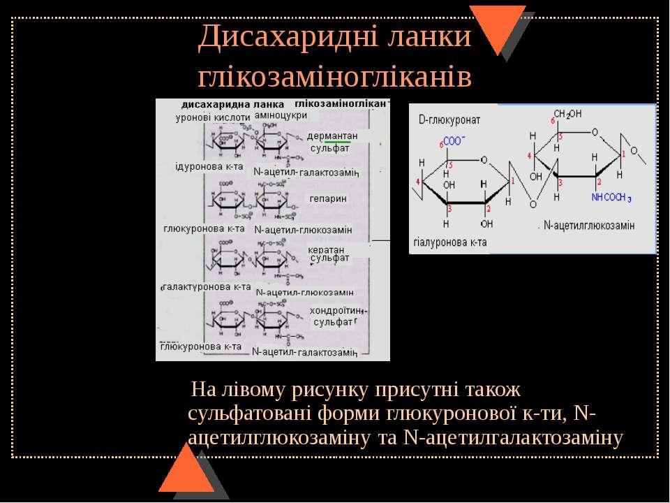 Дисахаридні ланки глікозаміногліканів На лівому рисунку присутні також сульфа...