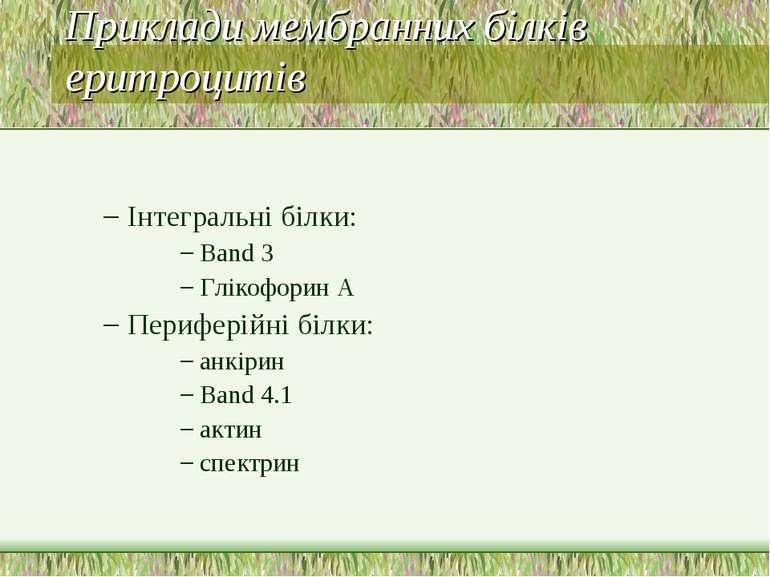 Приклади мембранних білків еритроцитів Інтегральні білки: Band 3 Глікофорин A...