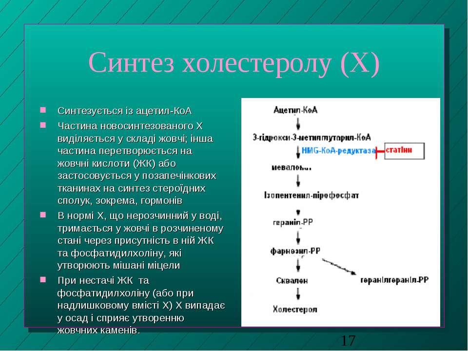 Синтез холестеролу (Х) Синтезується із ацетил-КоА Частина новосинтезованого Х...