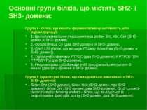 Основні групи білків, що містять SH2- і SH3- домени: Група І - білки, що мают...