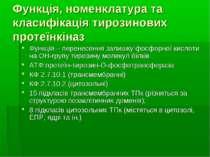 Функція, номенклатура та класифікація тирозинових протеїнкіназ Функція – пере...