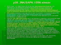 p38, JNK/SAPK і ERK-кінази МАР-кінази – це збірна група білків, містить три р...