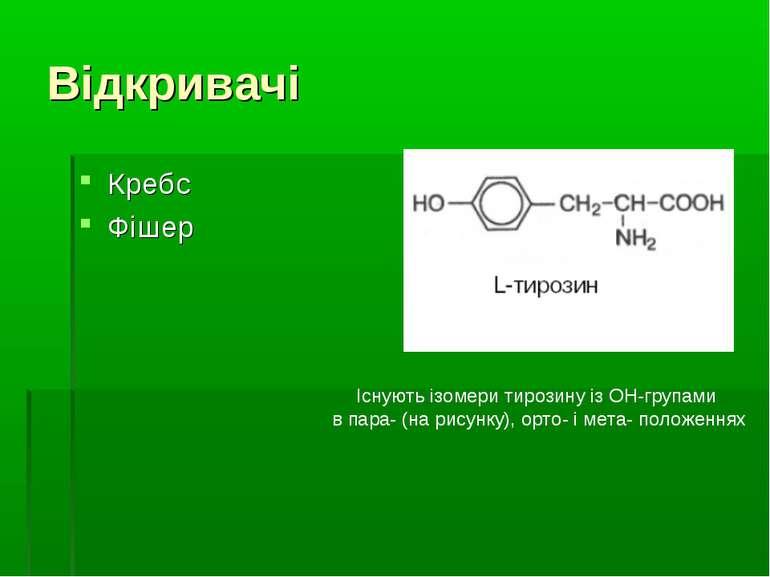Відкривачі Кребс Фішер Існують ізомери тирозину із ОН-групами в пара- (на рис...