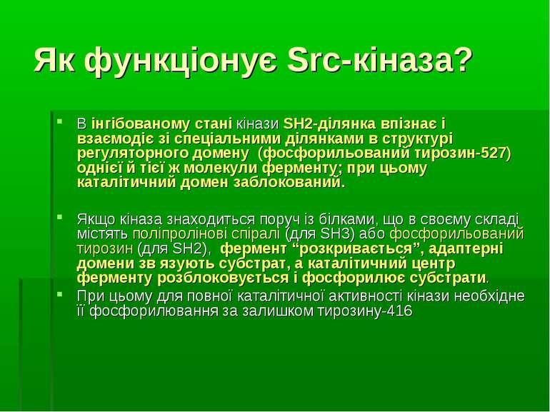 Як функціонує Src-кіназа? В інгібованому стані кінази SH2-ділянка впізнає і в...