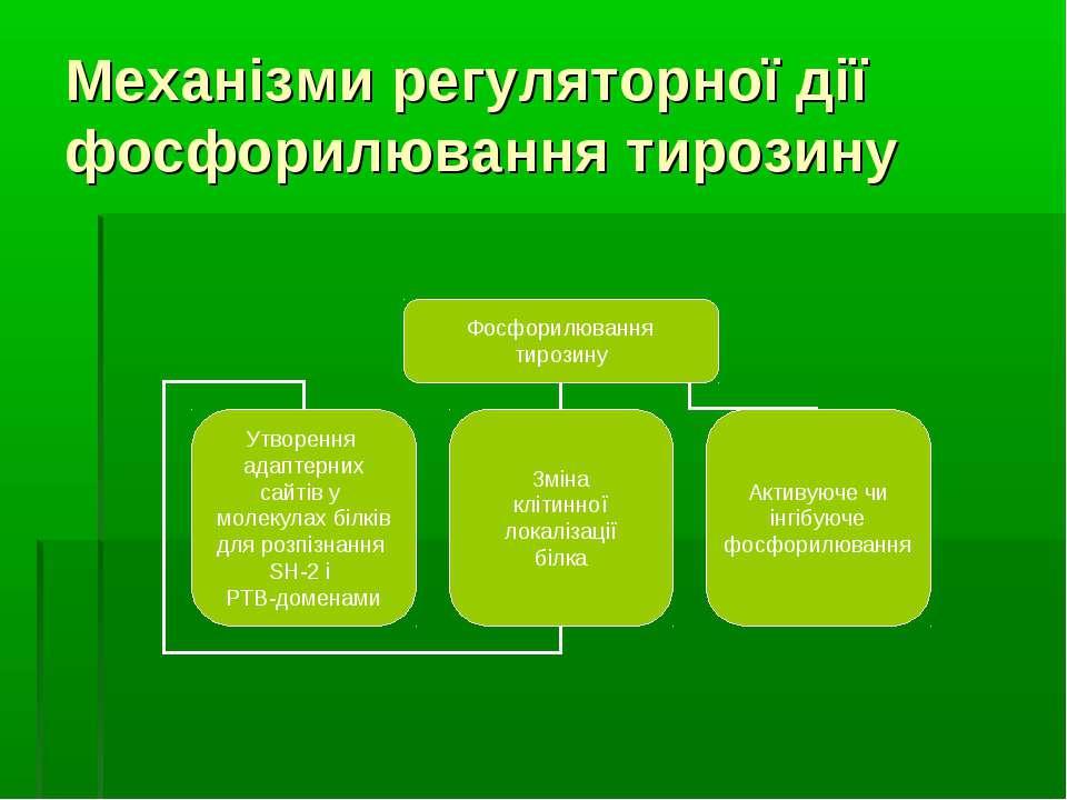 Механізми регуляторної дії фосфорилювання тирозину