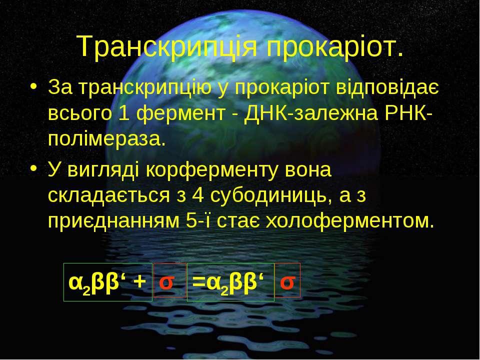 Транскрипція прокаріот. За транскрипцію у прокаріот відповідає всього 1 ферме...