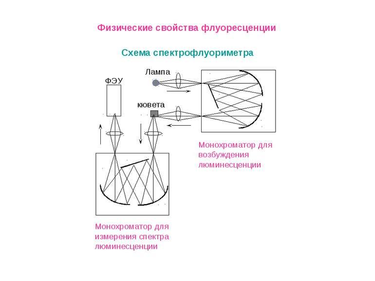 Схема спектрофлуориметра Физические свойства флуоресценции