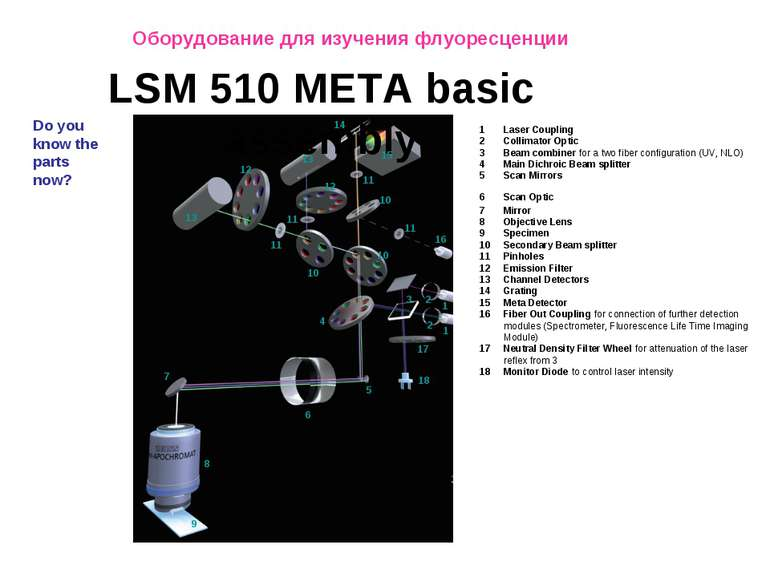1 2 3 4 5 6 7 8 9 10 Do you know the parts now? LSM 510 META basic assembly 1...
