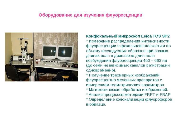 Конфокальный микроскоп Leica TCS SP2 * Измерение распределения интенсивности ...