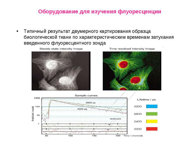 Оборудование для изучения флуоресценции Типичный результат двумерного картиро...