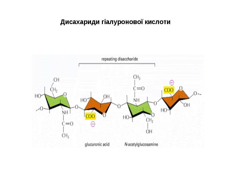 Дисахариди гіалуронової кислоти