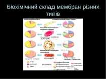Біохімічний склад мембран різних типів
