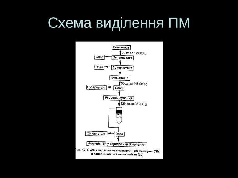 Схема виділення ПМ