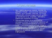 Стрес плода Це – чисто медичне явище, відоме як дистрес плода – загальнооб єд...