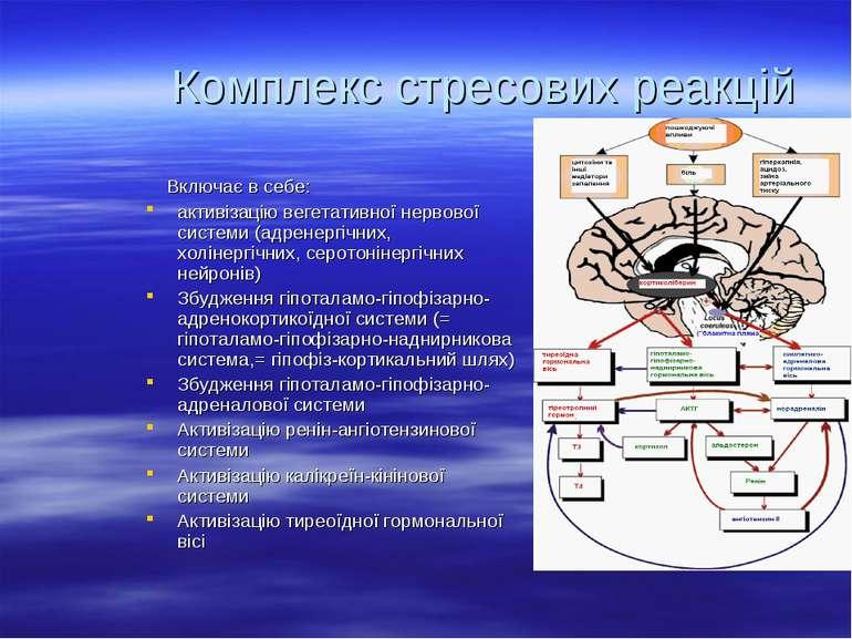 Комплекс стресових реакцій Включає в себе: активізацію вегетативної нервової ...