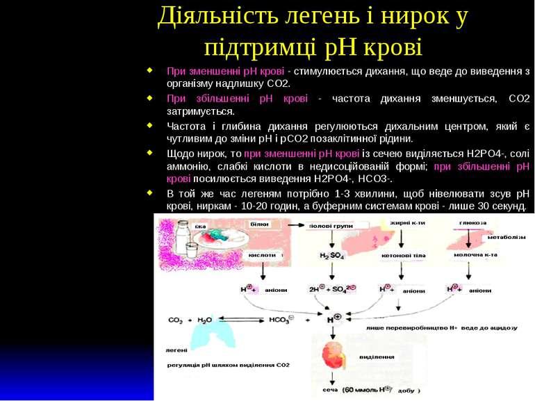 Діяльність легень і нирок у підтримці рН крові При зменшенні рН крові - стиму...