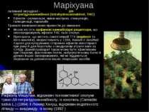 Маріхуана Активний інгредієнт - Δ9-тетрагідроканнабінол (tetrahydrocannabinol...
