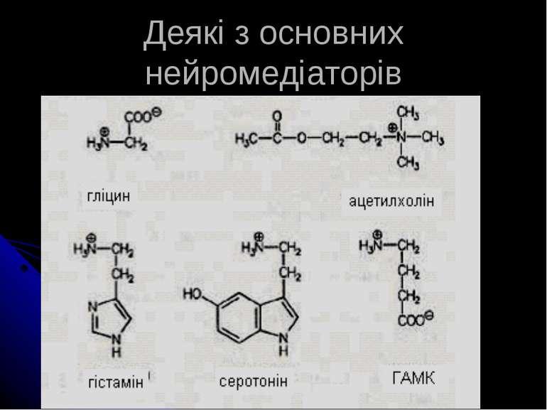 Деякі з основних нейромедіаторів
