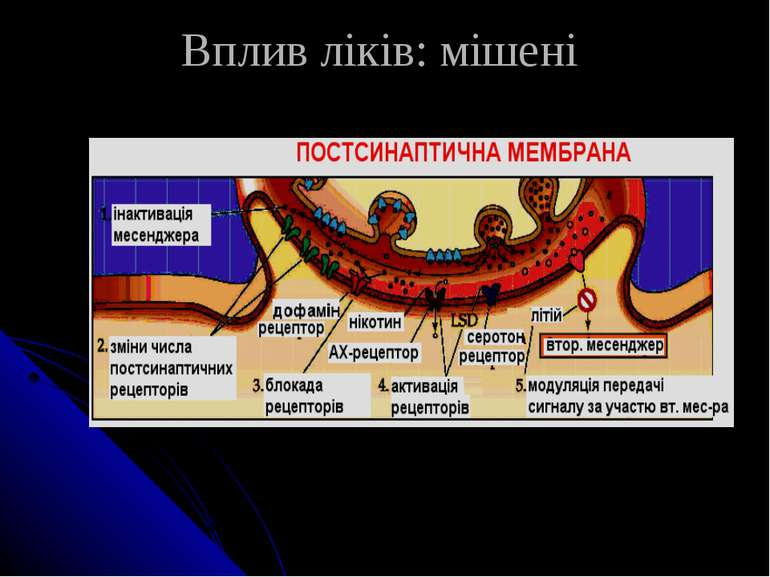 Вплив ліків: мішені