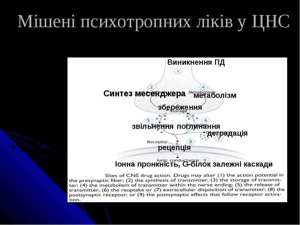 Мішені психотропних ліків у ЦНС Синтез месенджера метаболізм поглинання звіль...