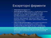 Екскреторні ферменти Лейцинамінопептидаза (ЛАП) Лужна фосфатаза (ЛФ) (ізоферм...