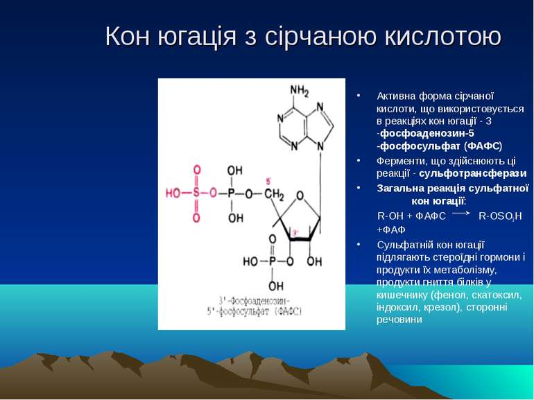 Кон югація з сірчаною кислотою Активна форма сірчаної кислоти, що використову...