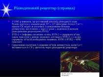 Ріанодиновий рецептор (справка) У 1985 р виявили, що рослинний алкалоїд ріано...