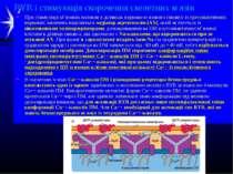 """RYR і стимуляція скорочення скелетних м язів При стимуляції м""""язових волокон ..."""