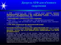 Джерела АТФ для м'язового скорочення 1) АТФ - утворюється при легкій і помірн...