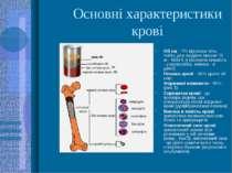 Основні характеристики крові Об єм - 7% від маси тіла, тобто для людини масою...