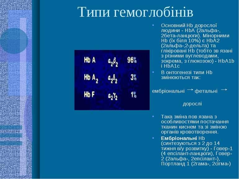 Типи гемоглобінів Основний Hb дорослої людини - HbА (2альфа-, 2бета-ланцюги)....