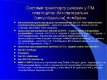 Системи транспорту речовин у ПМ гепатоцитів: базолатеральна (синусоїдальна) м...
